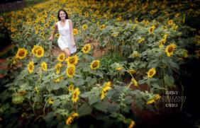 sunflowers, summer portraits, sundresses, war eagle, auburn, photography workshops, urban workshop, senior portraits, moreland photography, ideas for senior girls,